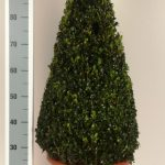 decopot-kegel-80-cm