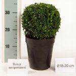 zwarte-pot-bol-18-20-cm