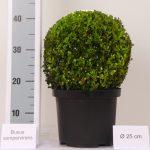 zwarte-pot-bol-25-cm